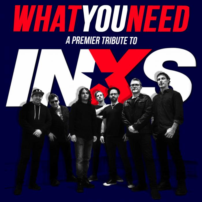What You Need - A Tribute to INXS