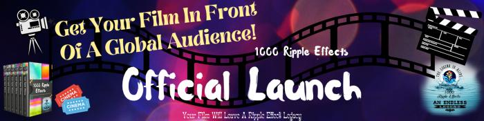 Calling All Film Makers: 1000 Ripple Effects Film Festival