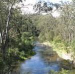 Unique Melbourne: the Lure of the Yarra River
